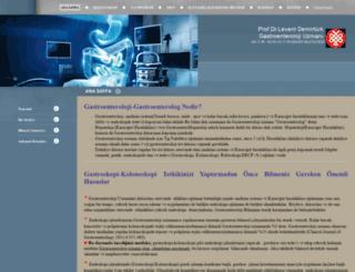 leventdemirturk.net screenshot
