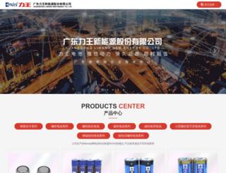 liwangbattery.com screenshot