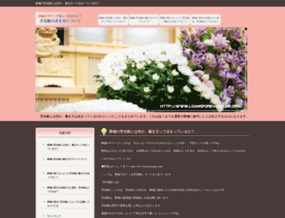 loansforeveryone.org screenshot