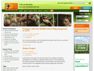 lolayabonobo.wildlifedirect.org screenshot