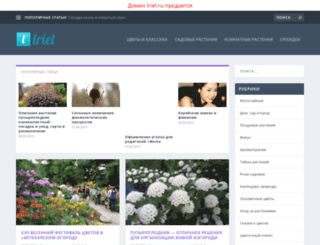 lriel.ru screenshot