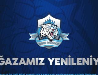 magaza.dp-gaming.org screenshot