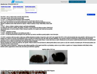 magnum.wbs.cz screenshot