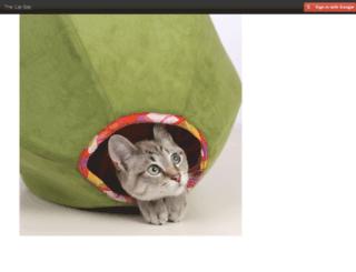 manage.thecatball.com screenshot