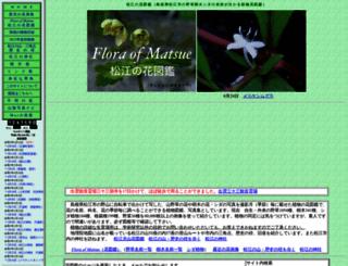 matsue-hana.com screenshot