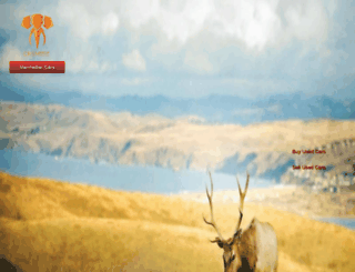 mcarsindia.com screenshot