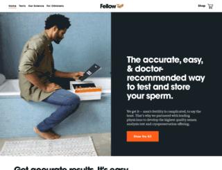 meetfellow.com screenshot