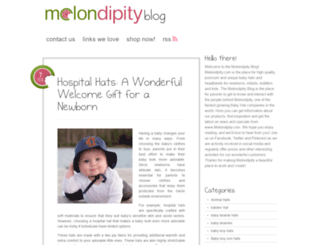 melondipityblog.com screenshot