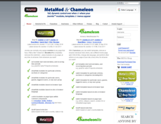 metamodpro.com screenshot
