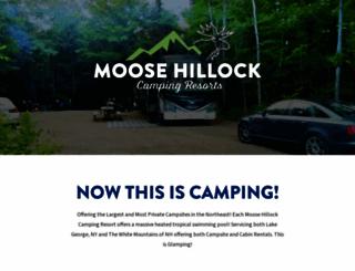 moosehillock.com screenshot