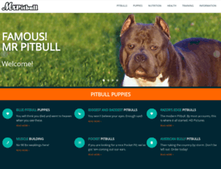 mrpitbull.com screenshot