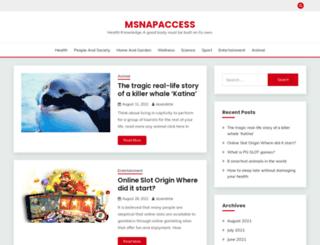 msnapaccess.com screenshot