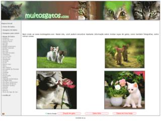 muitosgatos.com screenshot