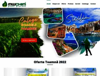 mwchim.ro screenshot