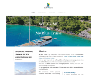 mybluecruise.com screenshot
