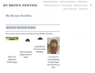 mybrownnewfies.com screenshot