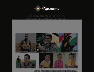 nasname.com screenshot