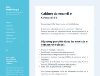 net-marketing.fr screenshot