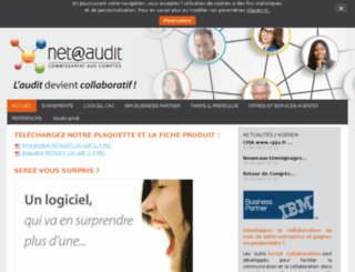 netaudit.fr screenshot