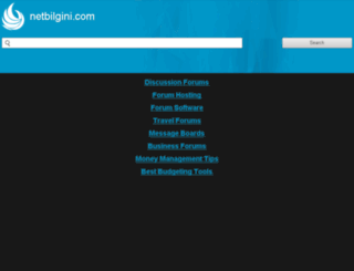 netbilgini.com screenshot