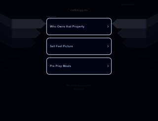 netblogg.eu screenshot