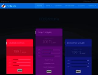 netesta.com screenshot
