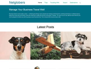 netglobers.com screenshot