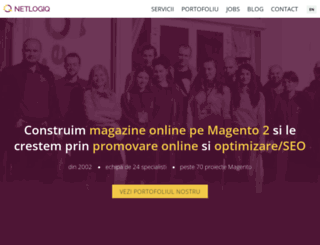 netlogiq.ro screenshot