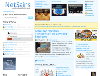 netsains.com screenshot