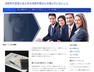 networkoyun.com screenshot