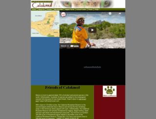 newcomersguideusa.com screenshot