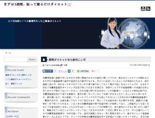 niche-website-guide.com screenshot