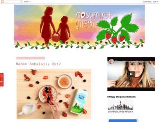 nisankaraahmetoglu.blogspot.com screenshot