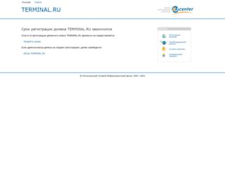 nizhnekamsk.terminal.ru screenshot