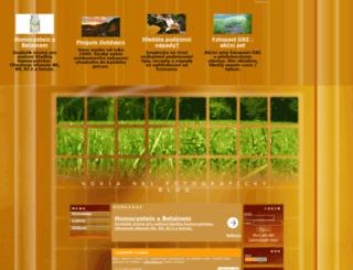 nokian81.wgz.cz screenshot