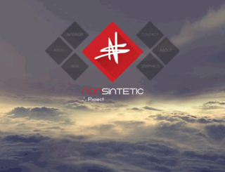 nonsintetic.com screenshot