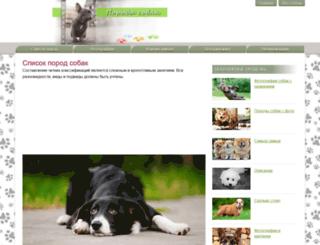 nopoga.ru screenshot