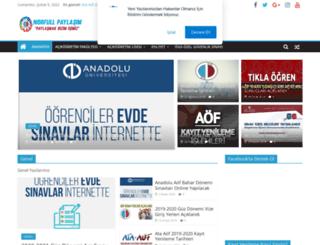 norfulpaylasim.com screenshot