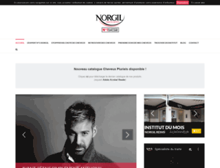 norgil.com screenshot