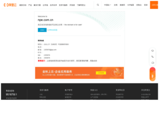 npe.com.cn screenshot