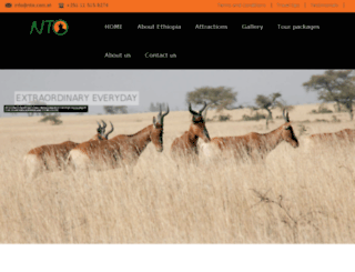 nto.com.et screenshot