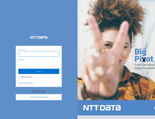 nttdataservices--roi.na35.visual.force.com screenshot