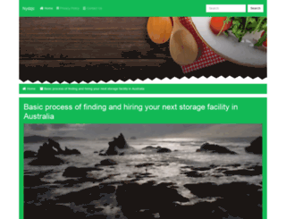 nydzjc.com screenshot