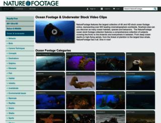 oceanfootage.com screenshot