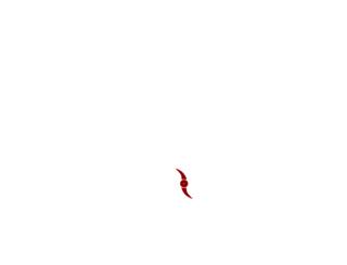 parrucchenapoli.net screenshot
