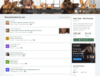 paw-talk.net screenshot