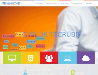 penguenturk.net screenshot