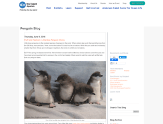 penguins.neaq.org screenshot