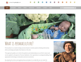 permacultureprinciples.com screenshot