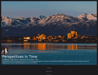 perspectivesintime.com screenshot